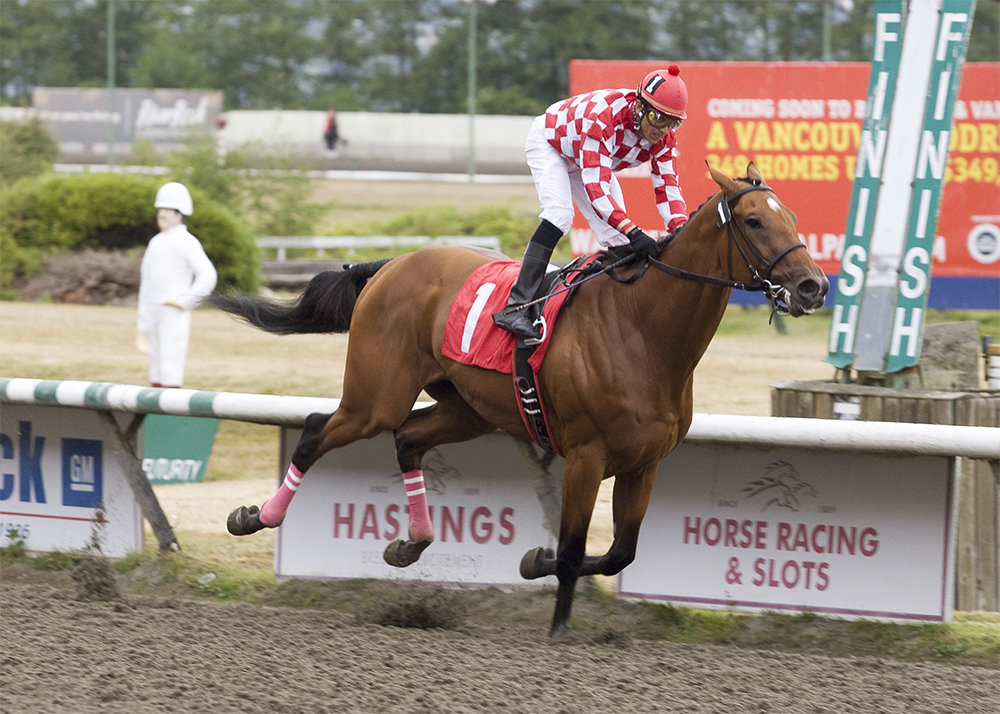 Commander winning the S.W. Randall Plate Handicap at Hastings