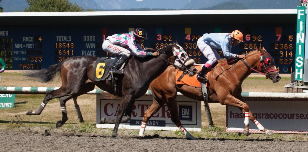 CRIUS MAKES IT TWO FOR TWO WINNING THE FOURTH ON SUNDAY AT HASTINGS - PATTI TUBBS PHOTO
