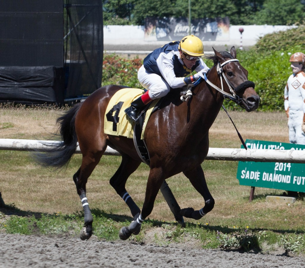 I DIG THAT TOOK THE OPENER, ONE OF TWO WINNERS ON THE DAY FOR TRAINER JOHN SNOW