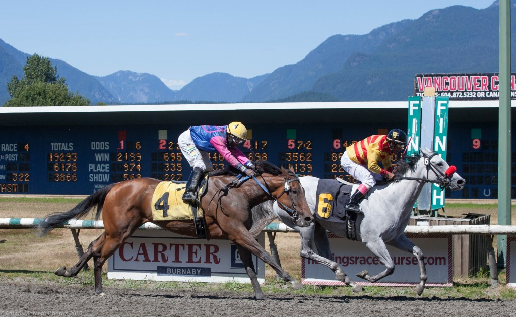 Canmor Farms - Blended seen here taking the 4th race for Maiden Fillies and Mares - Patti Tubbs Photo
