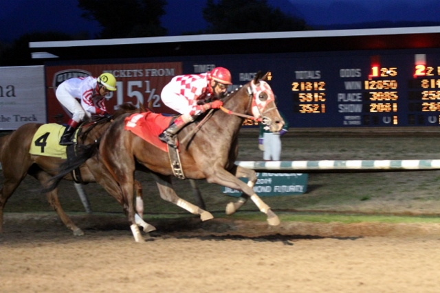 DEAR LILLY SEEN HERE WON THE FEATURED 4TH RACE ON FRIDAY NIGHT - JACKIE HUMBER PHOTO