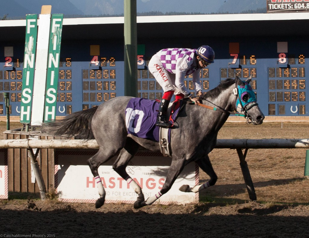 HABIDA SEEN HERE WINNING THE FILLY & MARE DIVISION OF THE CHAMPIONSHIP SERIES - PATTI TUBBS PHOTO