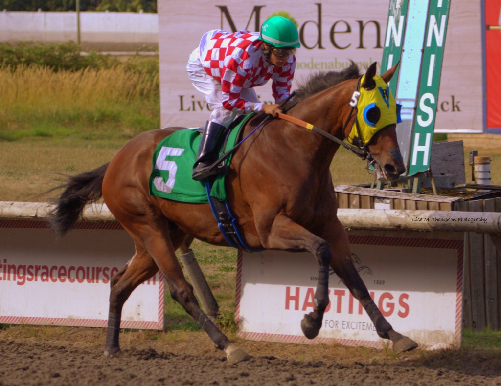 HERBIE D THE EASIEST OF WINNERS IN SUNDAY'S FEATURE - LISA THOMPSON PHOTO