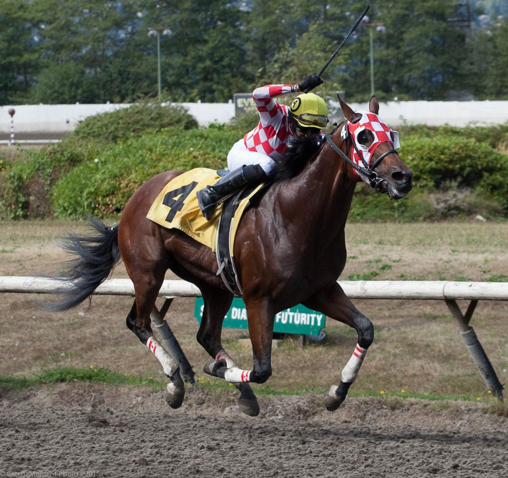 LEGION OF BOOM WENT ON THE OFFENCE SUNDAY WINNING THE FIFTH RACE - PATTI TUBBS PHOTO