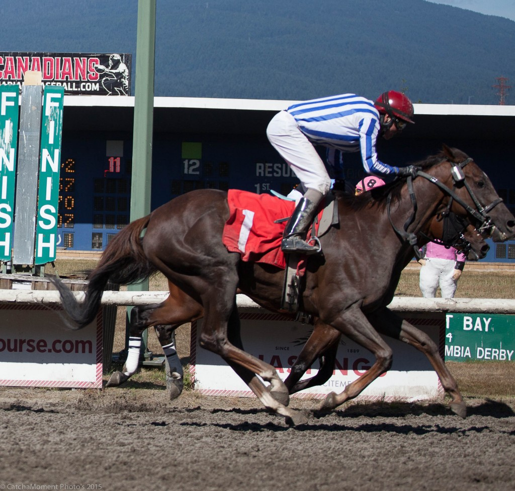 HASTINGS RACING CLUBS SQUARE DANCER WINNING THE REDEKOP CLASSIC - PATTI TUBBS PHOTO