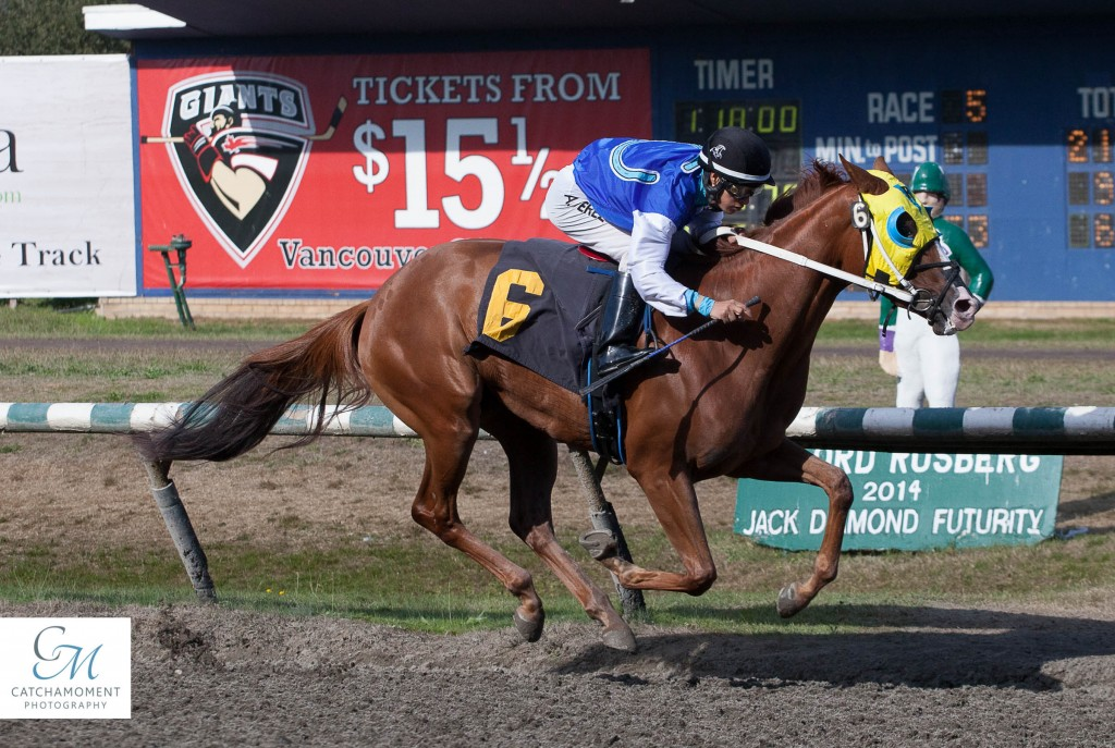 1ST TIME STARTER PRINCESS KATIE WON THE CTHS SALES STAKE FOR 2 YR OLD FILLIES