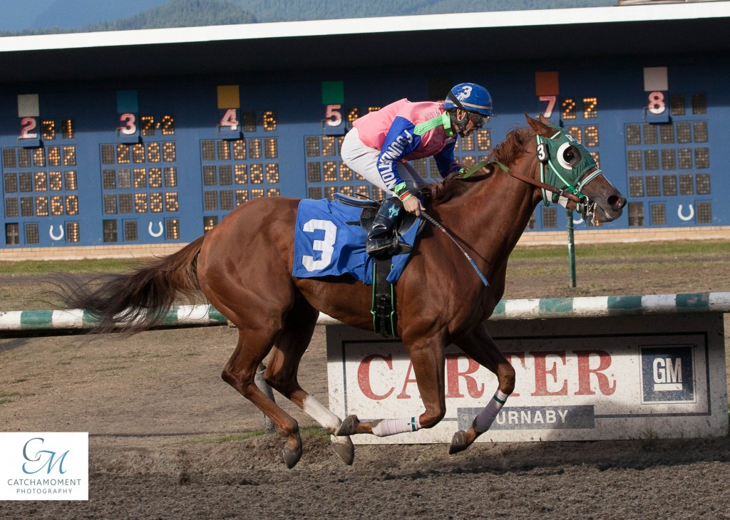 SAILINGFORSUN WAS THE EASIEST OF WINNERS IN THE CTHS SALES STAKE FOR 3 YEAR OLD FILLIES