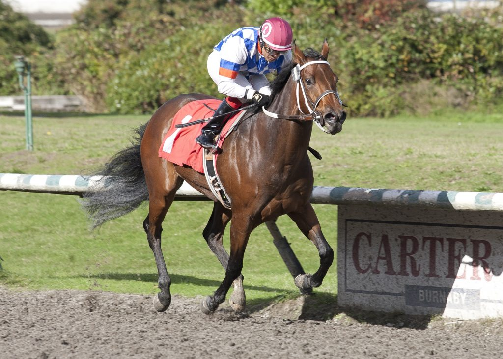 Yukon Belle winning The 38th Running of THE FANTASY on October 10th, 2016 at Hasting's Racecourse - Four Footed Foto